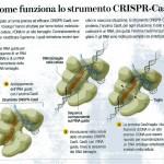 Il sistema CRISPR-Cas9