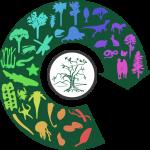 Programma delle Olimpiadi delle Scienze Naturali e Giochi delle Scienze Sperimentali 2017