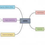 Collaborazioni delle Sezioni ANISN