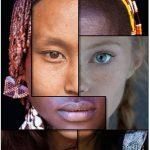 Il Manifesto della Diversità e dell'Unità Umana