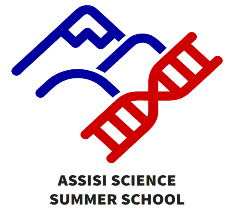 Assisi Summer School 2019