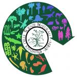 Bando delle Olimpiadi delle Scienze Naturali 2020