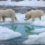 Mar Glaciale Artico senza ghiacci