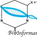 BioInformando: un nuovo progetto interdisciplinare per far incontrare biologia ed informatica nelle scuole superiori